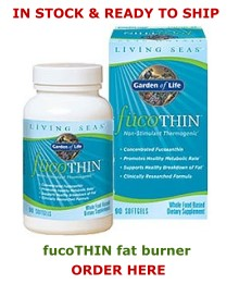fucoTHIN fat burner